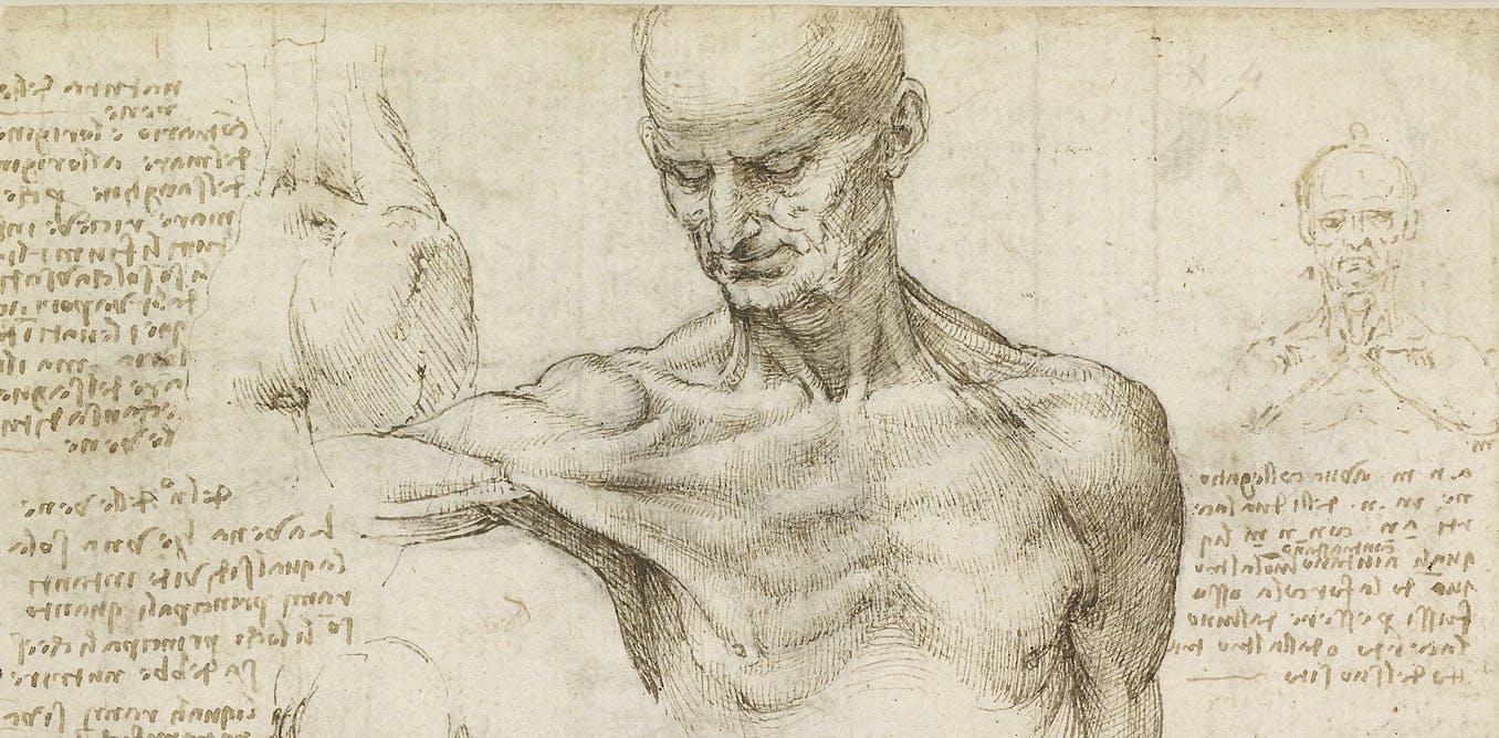 Jak je lidské tělo stavěno na přežití?