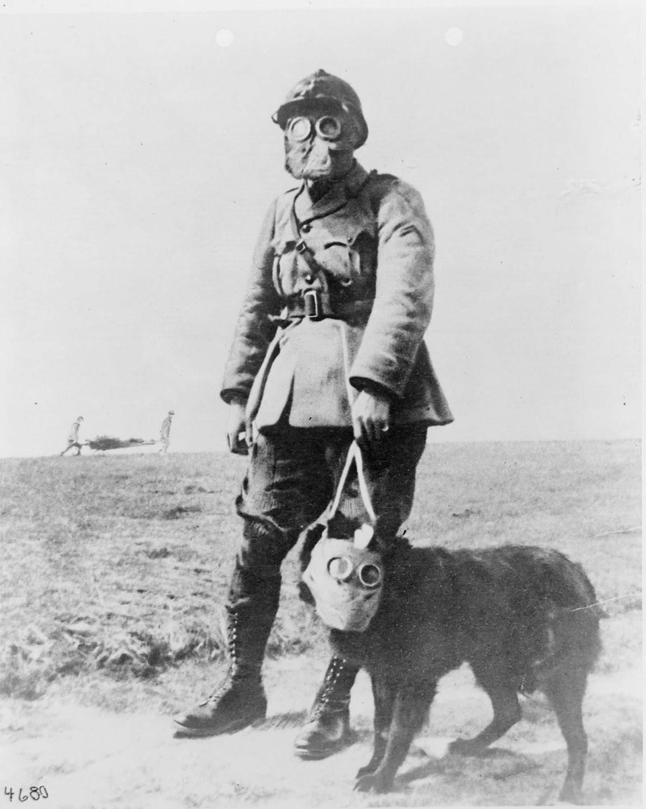 Francouzský seržant a pes v plynových maskách, poblíž první linie během první světové války 1915.