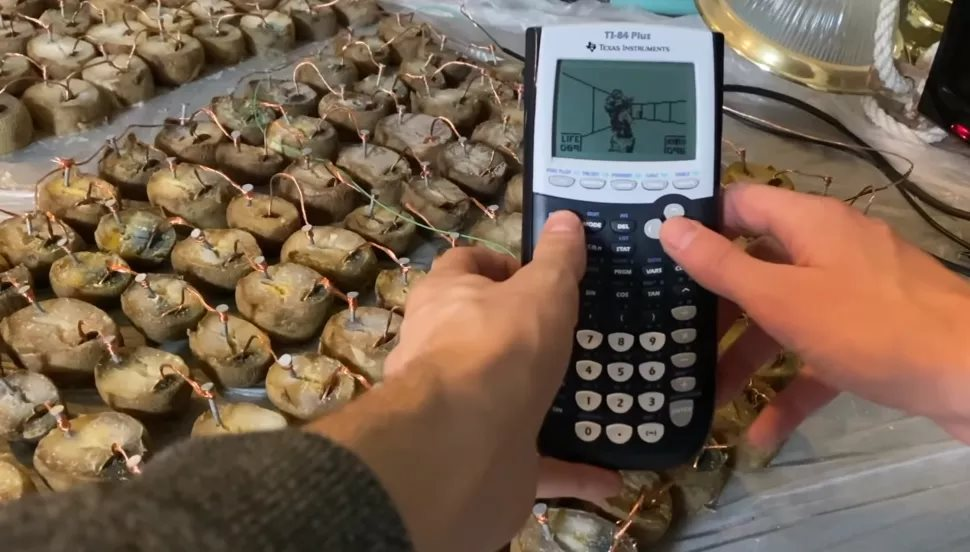 Pomocí 770 brambor poháněl kalkulačku na, které si zahrál DOOM